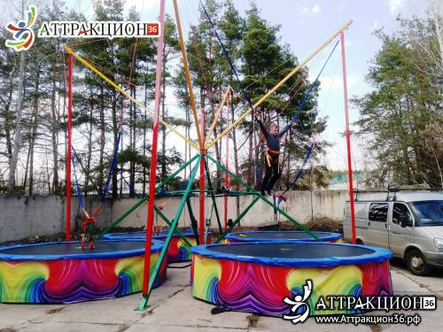 Аттракцион Батут ТАРЗАНКА 4местный 7.5метров (Аттракцион36.рф)